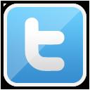 <p>The description of twitter</p>